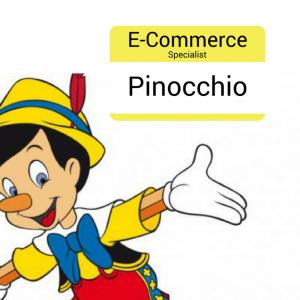 E-commerce Specialist Pinocchio